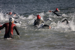 endurance sports, open water swimming, sports, ocean, wind wave, extreme sport, wave, water sport,