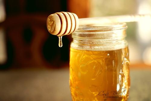 Honey, I love you