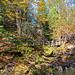 Série parc provincial La Vérendrye : sentier chutes Rolland 1.jpg