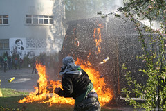 Fuego al guanaco
