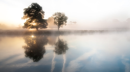trees mist reflection water misty sunrise dawn slough berkshire kevday langleypark