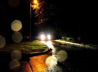 (266/365) In the rain