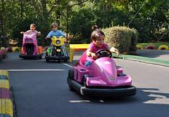 auto racing(0.0), kart racing(0.0), racing(0.0), tubing(0.0), automobile(1.0), go-kart(1.0), vehicle(1.0), race(1.0), park(1.0), amusement park(1.0),
