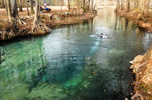 santafe water spring woods florida bubbles run clear springs ginniesprings devilsear