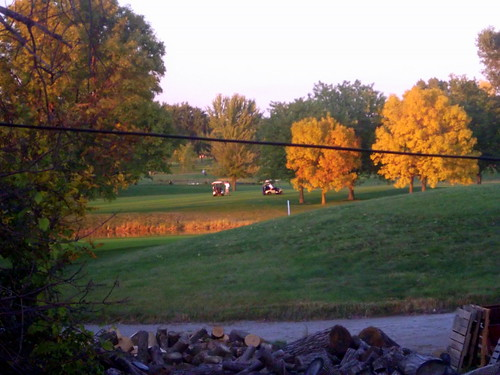 wood autumn trees color tree fall colors grass wisconsin golf landscape fallcolor fallcolors foliage golfing golfcourse greenery powerline countryclub pallet pallets golfcart wi oshkosh woodpile golfcar electricline utilityvehicle foxrivervalley foxcities colfcourse foxrivercities lakeshoremunicipal