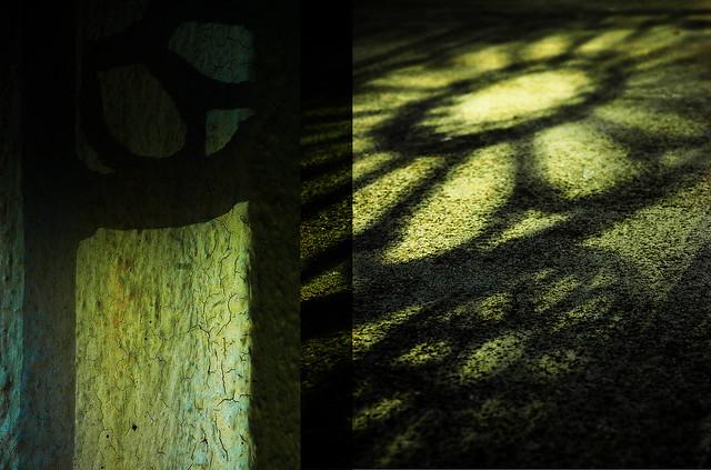 Shadows across Time