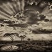 savannah sky by justbelightful