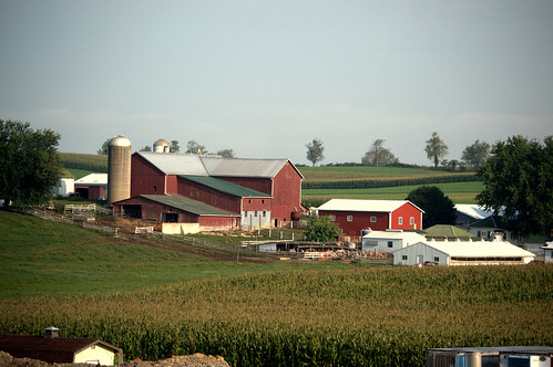 farm amishcountry