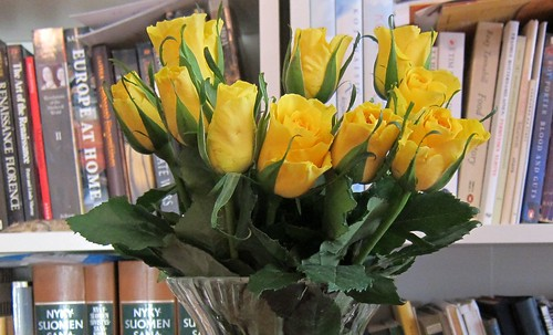 yellow roses by Anna Amnell