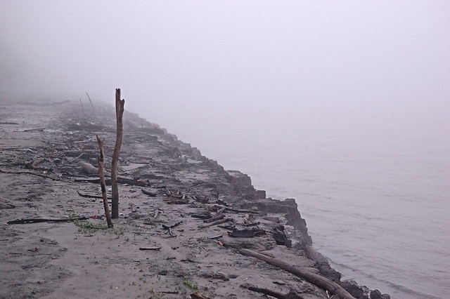 North Riverfront Park, in Saint Louis, Missouri, USA - Mississippi riverbank with two vertical sticks in fog