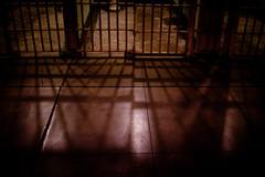 Alcatraz shadows