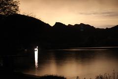 Sep 25 - Canyon Lake, 10:30 pm