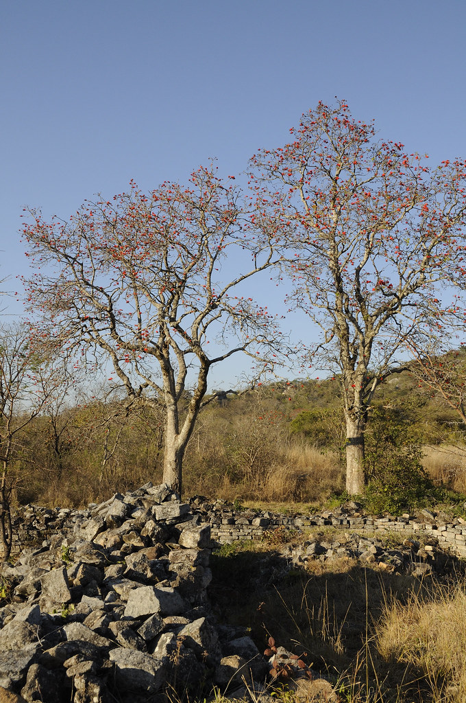 an overview of the great zimbabwe David beach, shona history and the  to delve into except on the subject matter of great zimbabwe  shona history and the archaeology of zimbabwe.