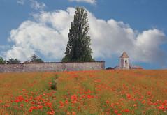ST HILAIRE DE BARBEZIEUX