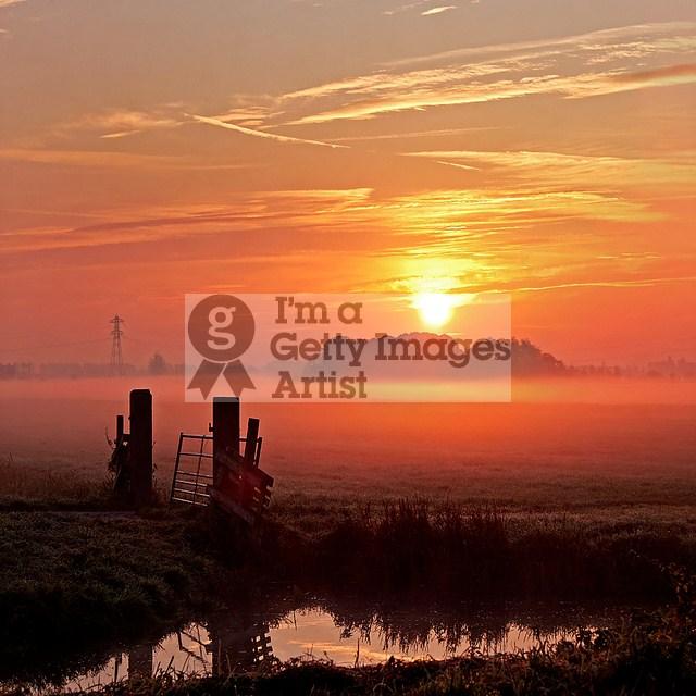 Misty Morning II