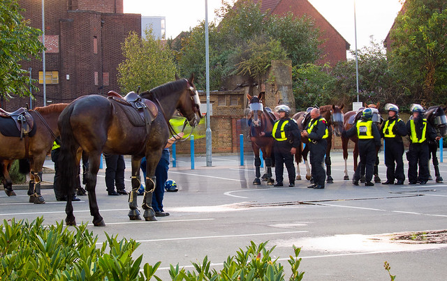 Police Horses gearing up at Anchor Retail Park, London : Anti-EDL Protests, London, September 2011