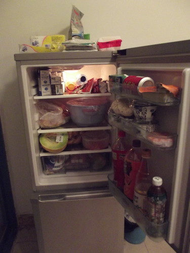 Chinese fridge