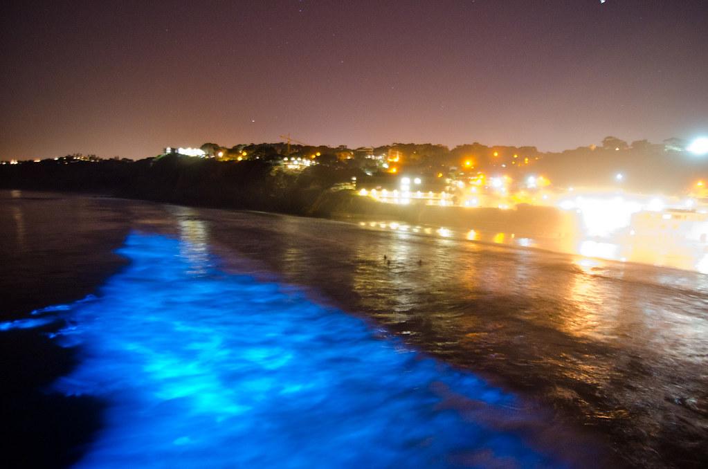 Bioluminescence at Scripps Pier