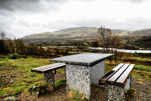 autumn mountains fall rain river scenic lichen birchtrees dovrefjell picnicbench lowlyingclouds larigan phamilton dovreplateau licensedwithgettyimages ginordicsept dovrevidda heglingen
