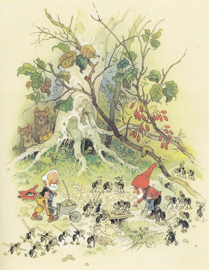 1000 images about fritz baumgarten illustrations on for Baum garten