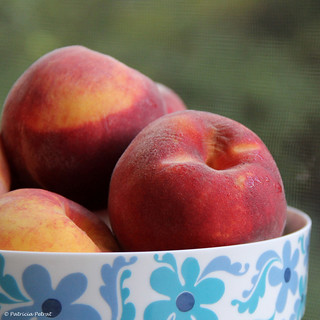 Peach Preserves Comin' Up! by Trish P. - K1000 Gal