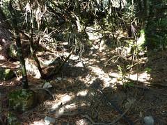 Le tuyau du petit captage dans la première raide montée