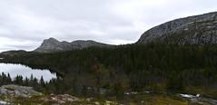 Diverse fra Gausdalen 2011