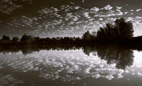 california reflection clouds sunrise canon boat blackwhite pond filter 5d davis yolo singhray waynetilcock