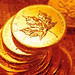 Canadian Maple Leaf Gold Coins by golden.saint