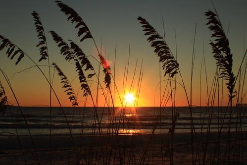sunset beach silhouette canon rebel florida elite fortdesoto t1i flutterbye216
