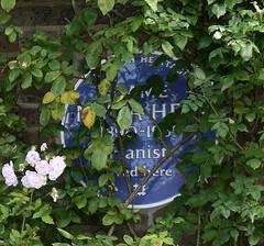 Photo of Myra Hess blue plaque