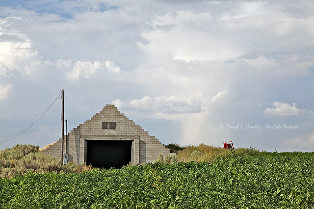Potato Farm  Flickr  Photo Sharing