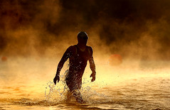 An athlete exits the water after finishing the 1.2 mile swim in the Vineman Ironman, Santa Rosa, CA, by Ezra Shaw