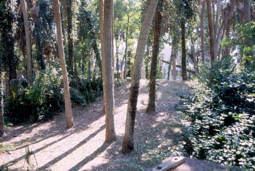 fl mound