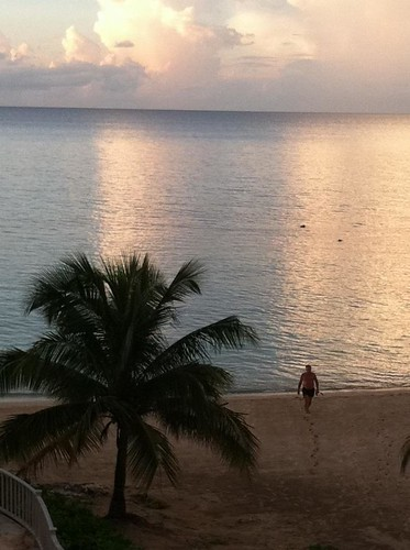 ocean sunset tree water snorkel palm jamaica