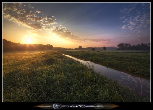 morning trees mist field grass fog clouds sunrise canon belgium belgique belgië rays erlend mechelen 60d hetbroek erroba robaye