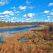 Small photo of Phipps Flowage