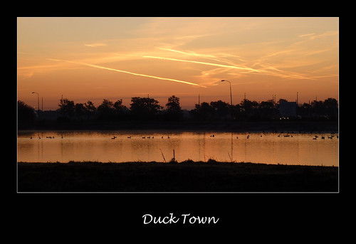 sunrise landscape ducks pitstop schuytgraaf