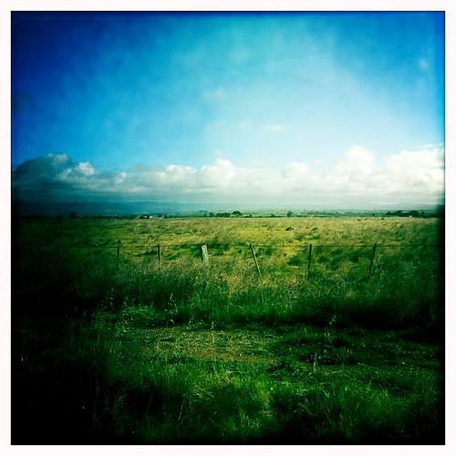 field rural train loop farm country pass fast rail railway australia melbourne victoria line v bacchus vic marsh railways regional rfr dmu parwan vline 3340 vlocity johnslens hipstamatic blankofilm