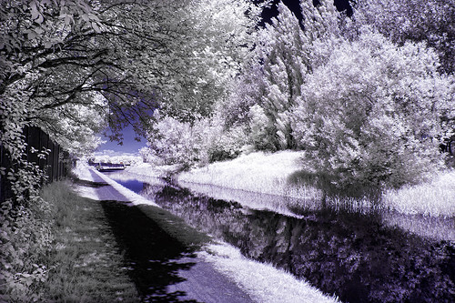 Titford Canal