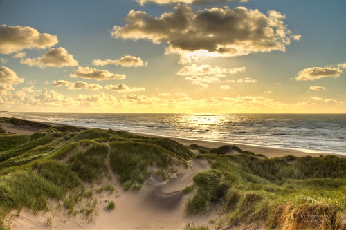 golden north sea beach, Denmark