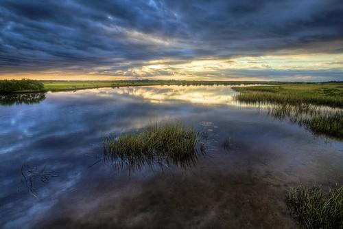 canon florida fl marsh princessplacepreserve
