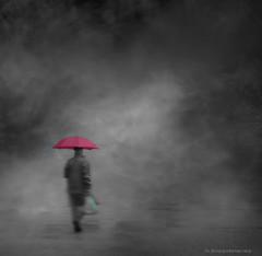 Green Bag + Pink Umbrella