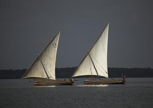 africa sea beach island boat kenya culture unescoworldheritagesite afrika tradition lamu swahili afrique eastafrica quénia lafforgue ケニア quênia كينيا 케냐 кения keňa 121880 肯尼亚 κένυα tradingroute кенијa