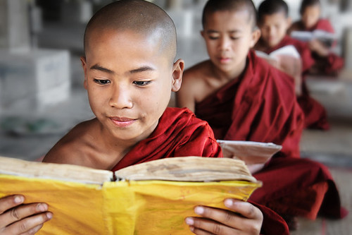 Novice Monk Reading