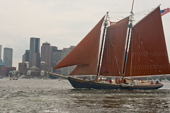 sail, sailboat, sailing ship, schooner, vehicle, sailing, sea, thames sailing barge, mast, lugger, tall ship, watercraft, boat,