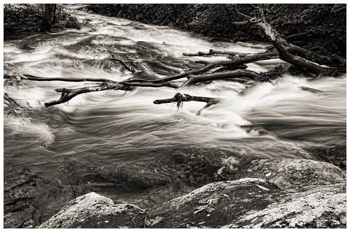 longexposure trees bw water river landscape blackwhite movement rocks nj sigma chester blackriver rise 1020mm d300 warrenhaynes coopermill robertcatalano