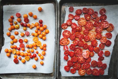 tomatos3 copy