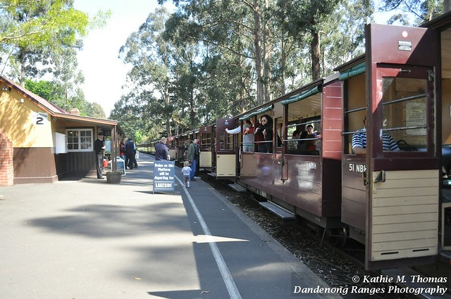 On the Puffing Billy