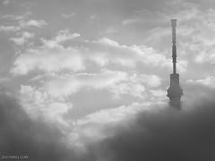 Scary Skytree
